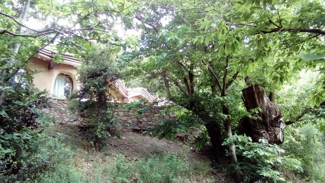 House in Vélieux - Vacation, holiday rental ad # 61287 Picture #1