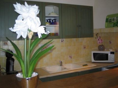 House in Cassis - Vacation, holiday rental ad # 61645 Picture #4