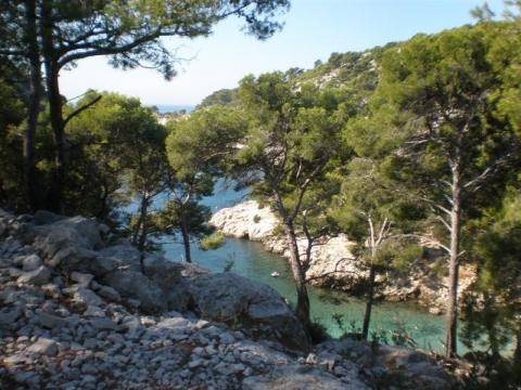 House in Cassis - Vacation, holiday rental ad # 61645 Picture #5