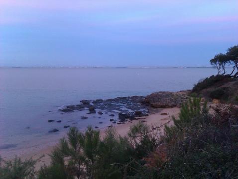 Gite île D'aix - 6 personnes - location vacances  n°61885