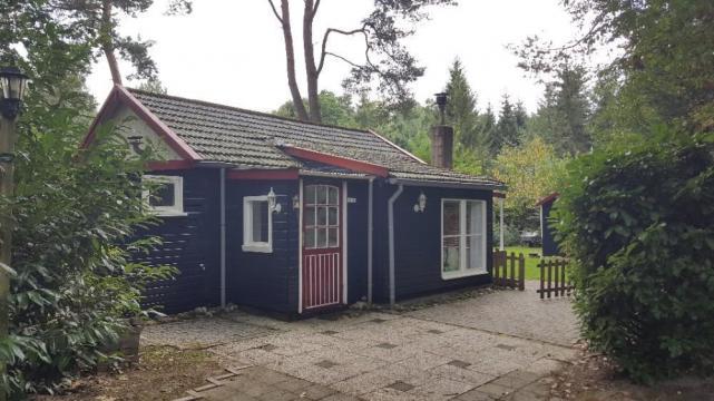 Huis Ommen/roodstaart - 4 personen - Vakantiewoning  no 61927