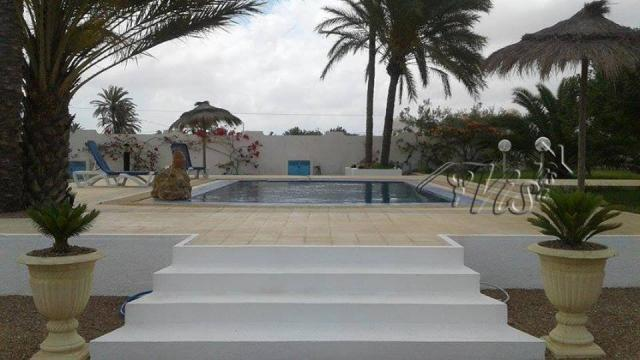 House in Djerba - Vacation, holiday rental ad # 62037 Picture #2
