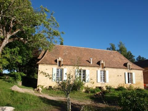 Maison Peyzac-le-moustier - 14 personnes - location vacances  n°62098