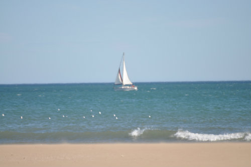 Flat in Narbonne Plage - Vacation, holiday rental ad # 62270 Picture #15