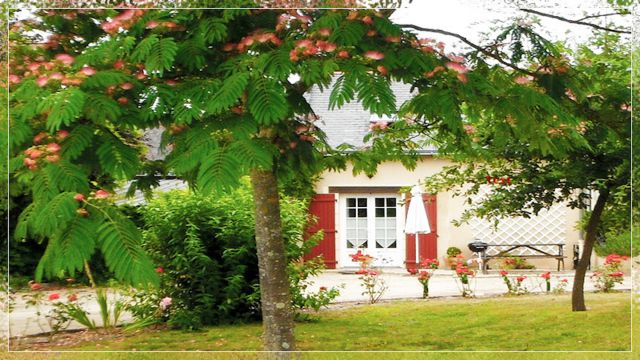 Gite in Saumur - Vacation, holiday rental ad # 62510 Picture #2