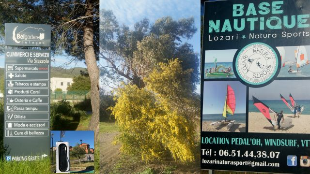 Appartement in L'Ile Rousse - Anzeige N°  62543 Foto N°9