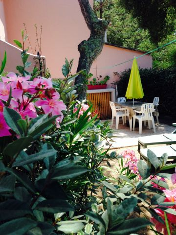Appartement in Porto vecchio te huur voor 4 personen - Advertentie no 62667