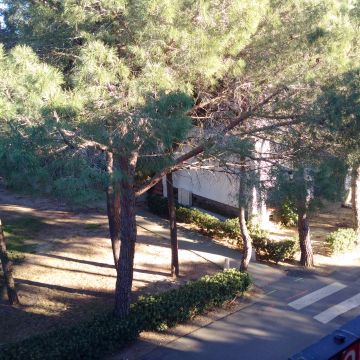 Flat in Argelès plage - Vacation, holiday rental ad # 62684 Picture #0