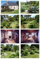 Haus Plougrescant(nouvelle Maison) - 4 Personen - Ferienwohnung N°62300