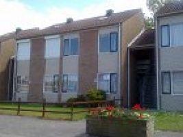 Nieuwvliet-bad - 5 personnes - location vacances  n°62692