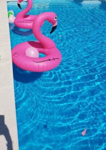 Gite Felgueiras - 6 personnes - location vacances  n°63369