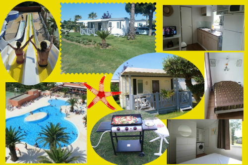 Mobile home Argelès-sur-mer - 6 people - holiday home  #63388