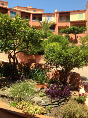 House in COLLIOURE - Vacation, holiday rental ad # 63509 Picture #1