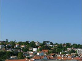 Flat 2 people Arcachon - holiday home  #63048