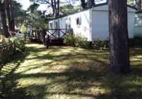 Mobil-home Quend Plage - 8 personnes - location vacances  n°63082