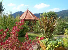 in La petite-raon für  6 •   Garten