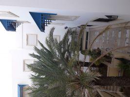 Hammamet nord -    accès handicapés