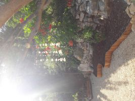Appartement Carnoux En Provence - 2 personen - Vakantiewoning  no 63795