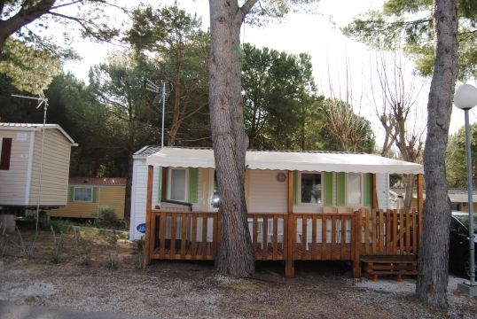 Mobile home in Le cap d'agde - Vacation, holiday rental ad # 64012 Picture #3