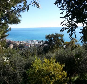 Gite in Menton - Vacation, holiday rental ad # 64543 Picture #0