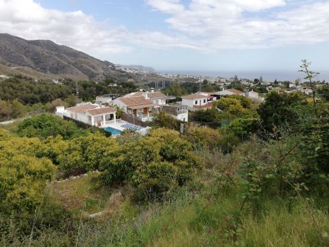 Gite in Frigiliana - Vacation, holiday rental ad # 64742 Picture #12