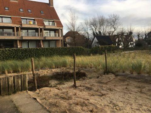 House in De Panne - Vacation, holiday rental ad # 64814 Picture #8