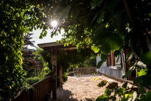 Gite Saulxures Sur Moselotte - 11 people - holiday home