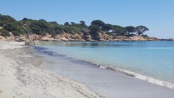Gite in Porto vecchio palombaggia voor  2 •   met zwembad in complex