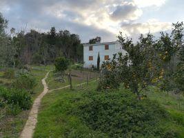 Maison Cervione - 6 personnes - location vacances