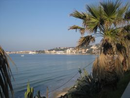 Flat Sanary Sur Mer - 4 people - holiday home  #64660