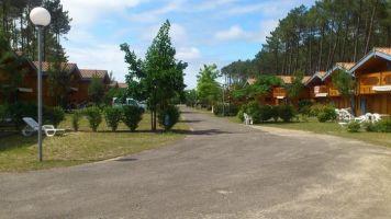 Chalet Bias - 5 personnes - location vacances  n°64663