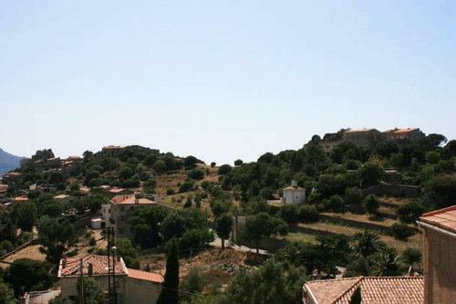 Flat in ile rousse - Vacation, holiday rental ad # 65221 Picture #5