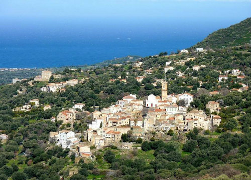 Flat in ile rousse - Vacation, holiday rental ad # 65221 Picture #6