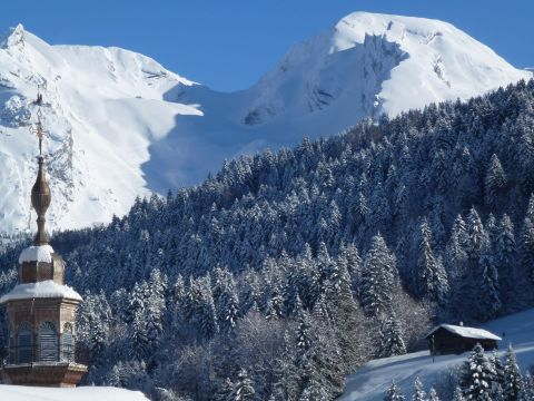 Chalet in Le grand bornand - Anzeige N°  65242 Foto N°12