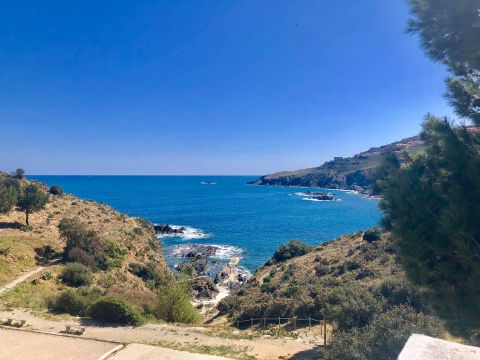 Flat in Banyuls sur mer - Vacation, holiday rental ad # 65329 Picture #1