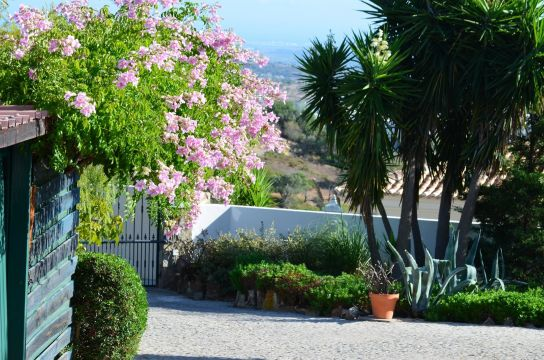 House in Loule - Vacation, holiday rental ad # 65341 Picture #17