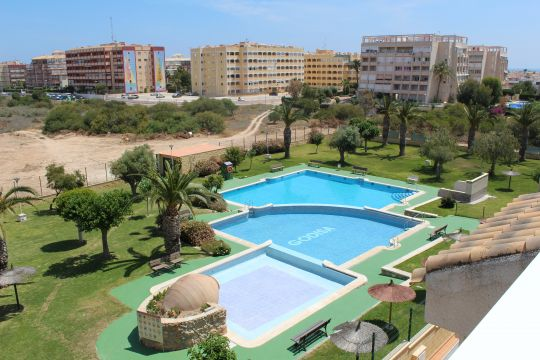 Flat in Torrevieja - Vacation, holiday rental ad # 65373 Picture #13