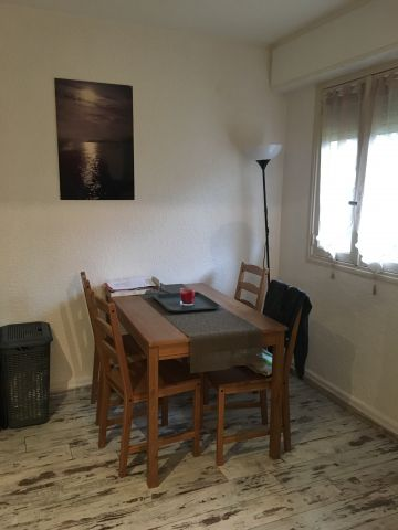 Studio in Cannes - Vacation, holiday rental ad # 65445 Picture #3
