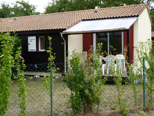 Chalet Hourtin - 5 personnes - location vacances  n°65487