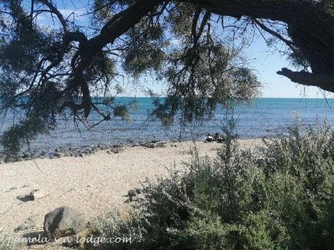 Appartement in Cap d'agde - Anzeige N°  65664 Foto N°7 thumbnail