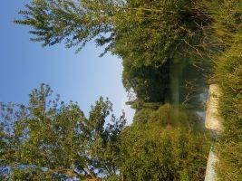 Huis Rieumes - 10 personen - Vakantiewoning  no 65832