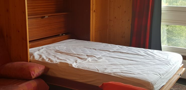 Studio in Laveissiere - Vacation, holiday rental ad # 66305 Picture #1