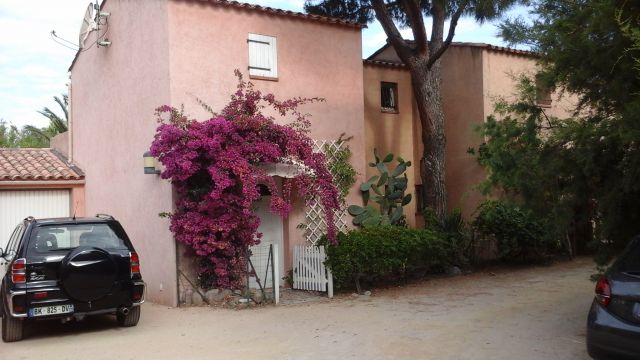 House in Calvi - Vacation, holiday rental ad # 66592 Picture #0