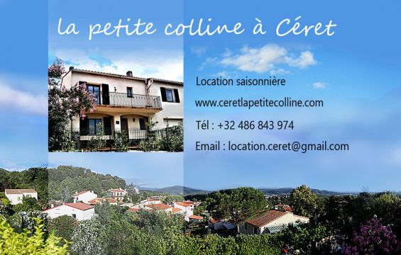 House in Céret - Vacation, holiday rental ad # 66978 Picture #13