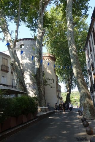 House in Céret - Vacation, holiday rental ad # 66978 Picture #15