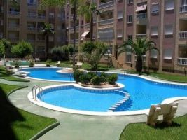 Flat 3 people Torrevieja - holiday home  #66021