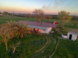 Farm Utrera (sevilla) - 8 people - holiday home  #66310