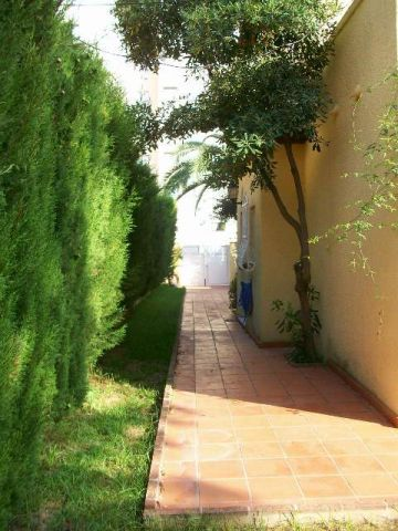 Chalet in Plage de gandia - Vacation, holiday rental ad # 67014 Picture #19