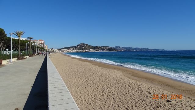 Appartement in Blanes - Anzeige N°  67428 Foto N°11 thumbnail
