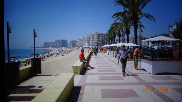 Appartement in Blanes - Anzeige N°  67428 Foto N°16 thumbnail